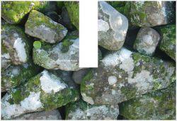 08_stones_2